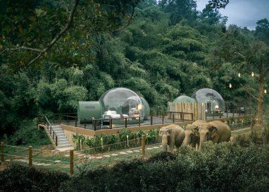 อนันตรา สามเหลี่ยมทองคำ แคมป์ช้าง แอนด์ รีสอร์ท สัมผัสห้องพัก 'จังเกิ้ล บับเบิ้ล' โดมใสใจกลางป่า